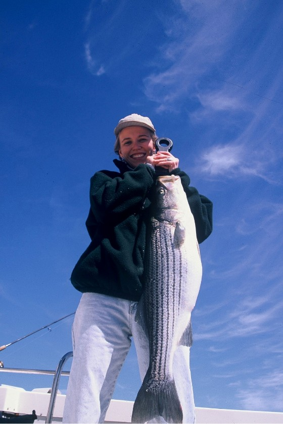 28 bertram fishing