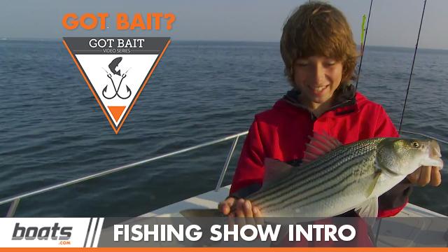 Got Bait? Watch the Intro