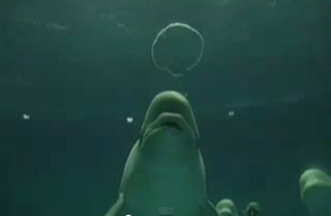 Manic Monday Video: Underwater Smoke Rings