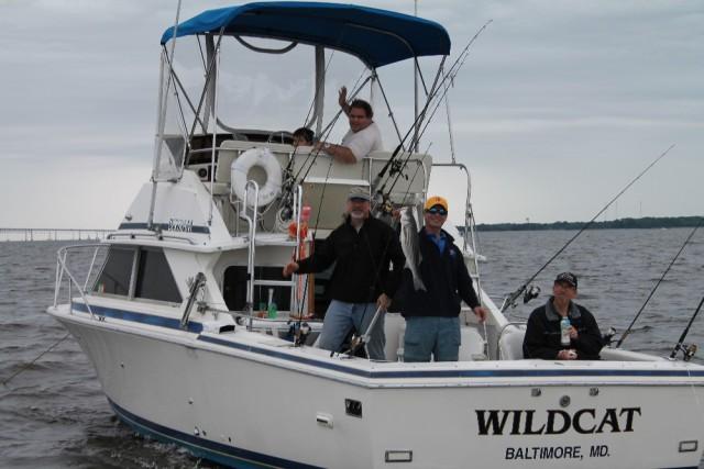 Boats We Love: Bertram 28 Flybridge Sportfishing Machine thumbnail