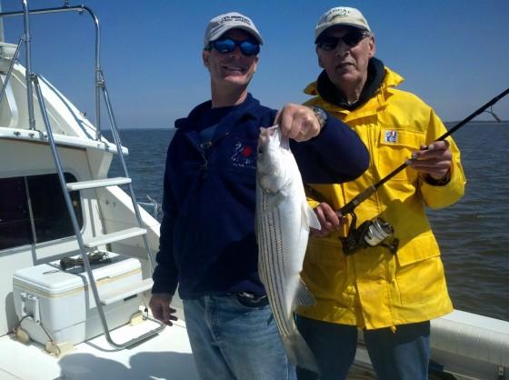bertram 28 fishing