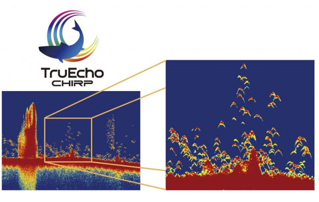 Furuno Goes CHIRP with its Latest Fishfinder