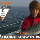 Got Bait? Watch the Intro