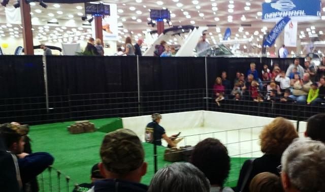 alligator wrestling at baltimore boat show
