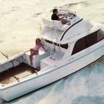 Boats We Love: Bertram 31
