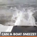 Can a boat sneeze? Watch this video to find out.