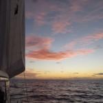 Sunday Sailing: Living the Dream