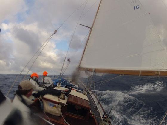 Dorade Log 5: Entering the Gulf Stream