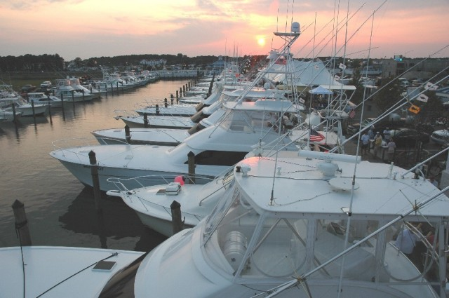fishing charter fleet