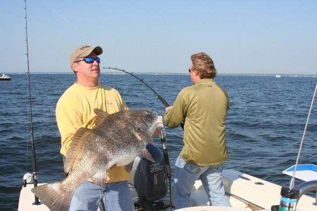 braid monofilament fishing line