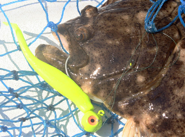 Fishing Friday: All About Fishing Line Color