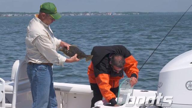 Got Bait? Take the Fishing Quiz