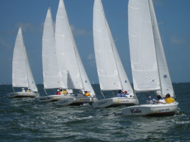 You'll find ever-growing fleets of Harbor 20s at weeknight yacht club races all over the world.