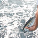 Fishing Friday: The Right Way to Release Fish