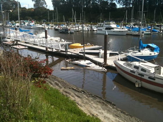 Sixty boats sank in Santa Cruz Harbor. The upper harbor, normally most tranquil, experienced strong currents and surging waves.