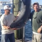 New Jersey Fishermen: Shark Jumped Into Boat