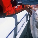 Fishing Friday: Freshwater Vs. Saltwater